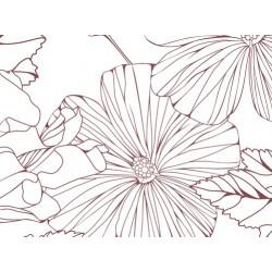Corollis rose N°83