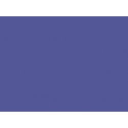 Iris n°208